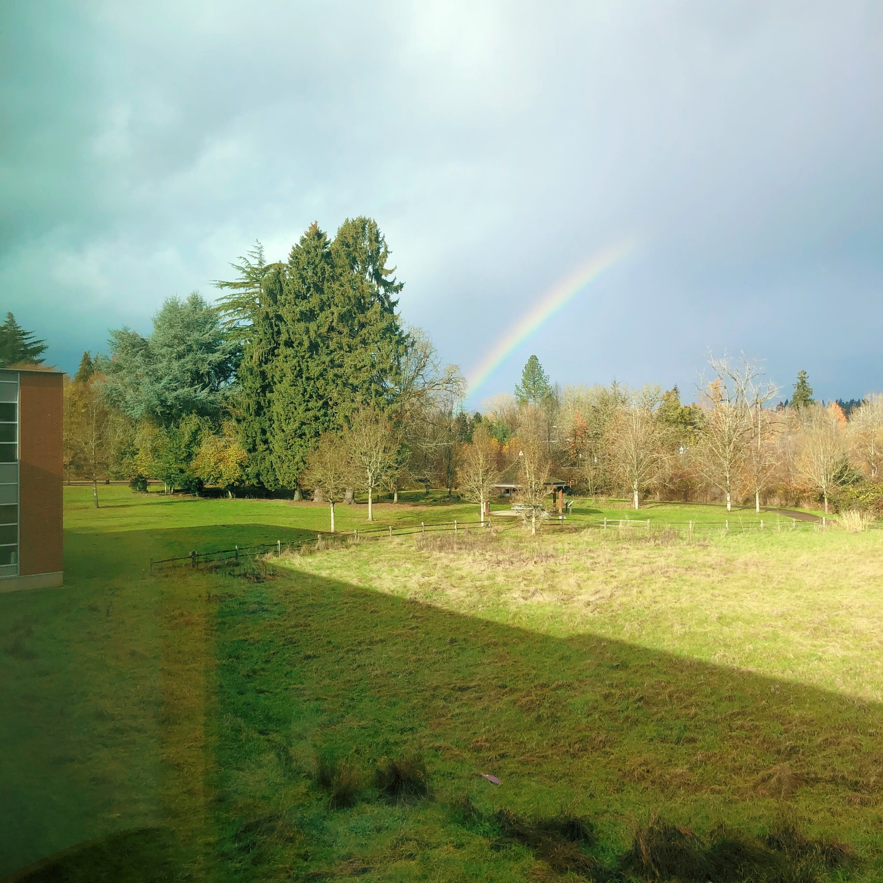 A photo of a grassy field, trees, sky, and a small rainbow.